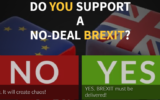 Do You Support a NO-DEAL BREXIT? 18