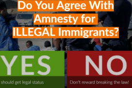 Should UK Give an Amnesty for Illegal Immigrants? 6